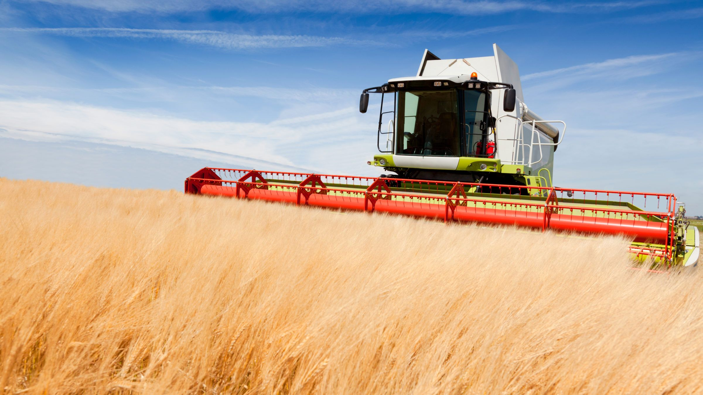 It's Possible To Cut Cropland Use in Half and Produce the Same Amount of Food, Says New Study