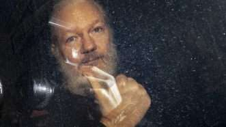 Julian-Assange-Newscom-2