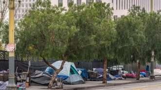 Reason-homelessla
