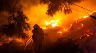reason-wildfire