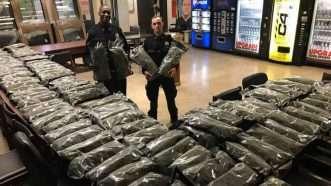 NYPD Hemp Seizure