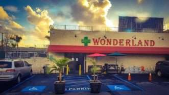Wonderland-pot-shop-LA