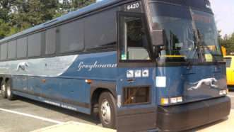 Greyhound-bus-Wikimedia