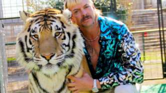 loder-tiger