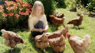 chickens_1161x653_adjusted