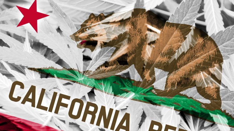 Could This California Environmental Law Be the Cannabis