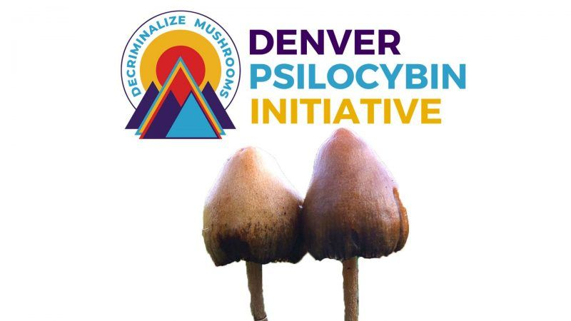 What are 'magic mushrooms' and why did Denver vote to decriminalise it?