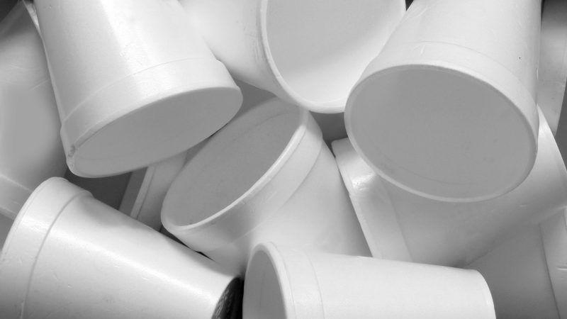 reason-styrofoam