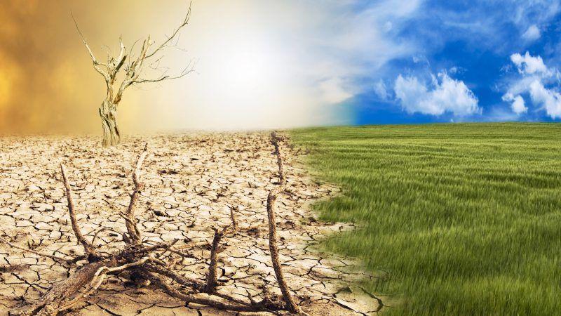 No climate apocalypse