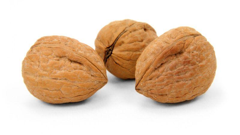reason-nuts