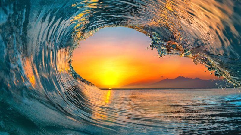 reason-wave