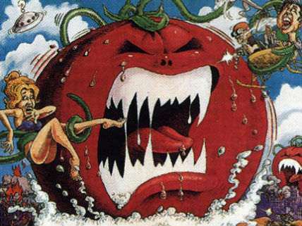 Killer tomatoes allowed to roam free - not