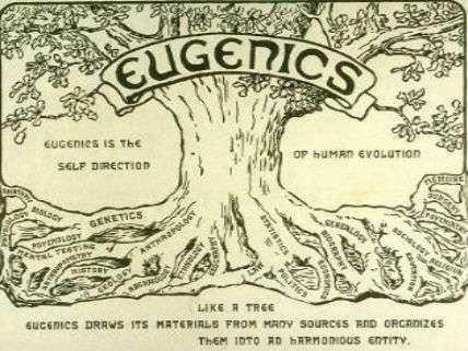 EugenicsTree