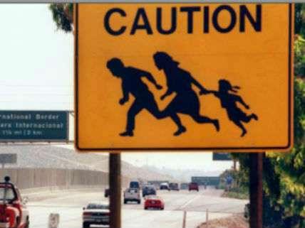 ImmigrationReason