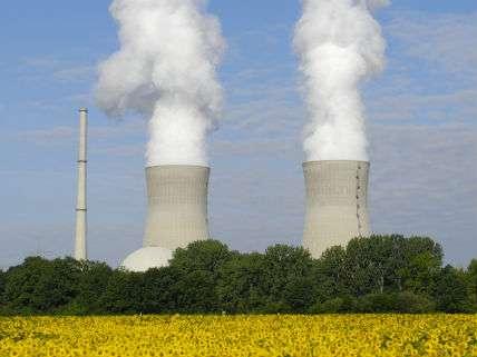 NuclearPowerHerbertKehrerNewscom