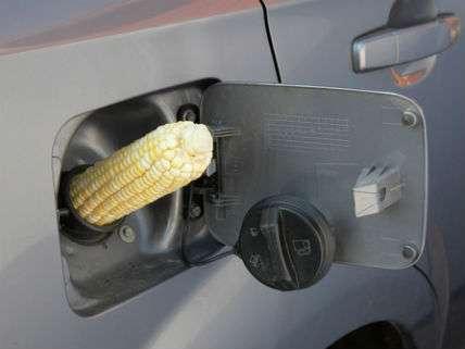 CornTankBiofuelsAndreblaisDreamstime