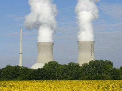 NuclearPowerHerberKehrerNewscom