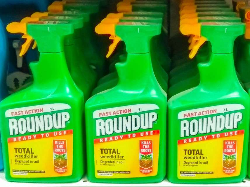 RoundupJamesCopelandDreamstime