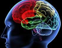 They say 70 percent of all brain activity is devoted to telling you how you're smarter than everybody else.