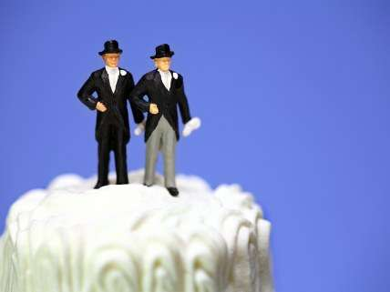 The cake is not a lie, but claims of possible widespread discrimination are.