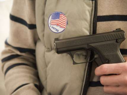 gun voter