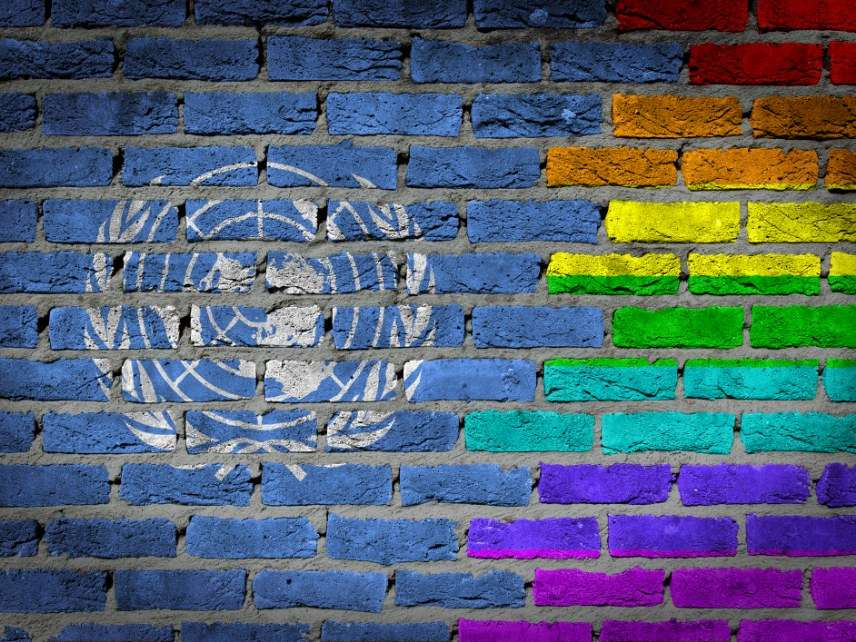 Gay United Nations flag