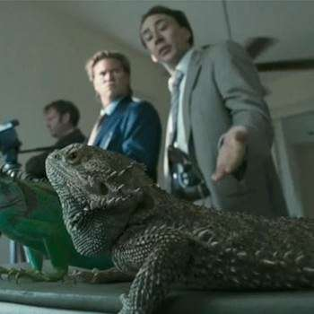 iguanas, nicolas cage, bad lieutetant, werner herzog