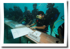 Underwater press conference, Maldives climate change, go into the water