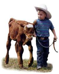 Step away from that calf little boy, and nobody gets hurt.