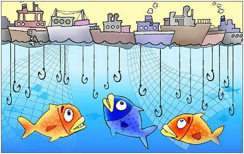 Congress' preferred fisheries policy