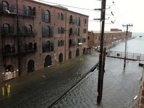 Red Hook on Tuesday