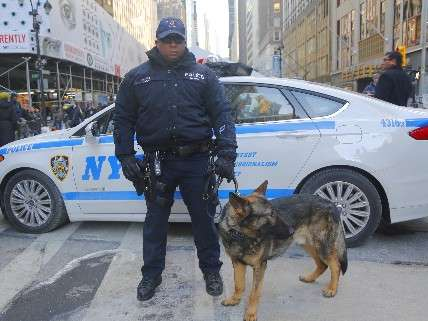 NYPD and K9