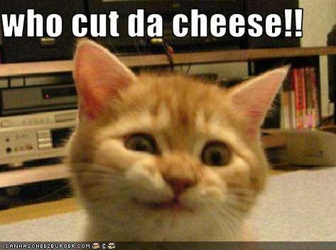 Stinky Cheese Slicing Ban