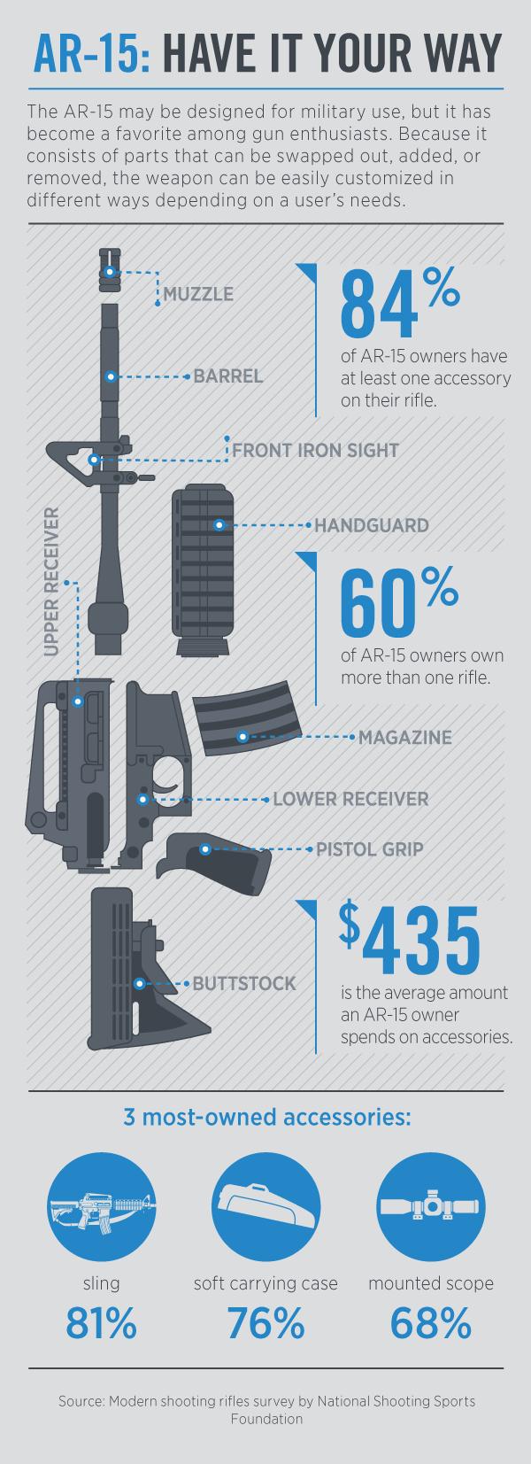 AR15 infographic