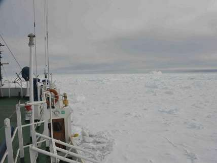 if you like your ice shelf you can keep it