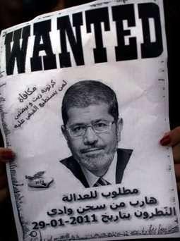 Mohamed Morsi, cattle rustler.