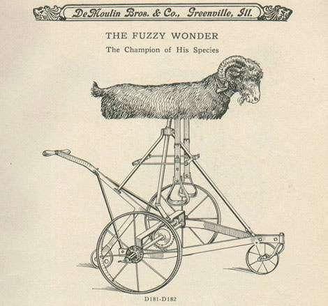 yep, that's a mechanical goat