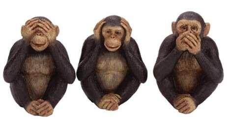 Monkey see no health care overhaul?