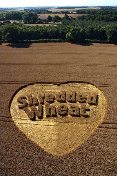 Regulated wheat.