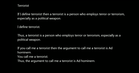 A screengrab from one of Loughner's YouTube videos.