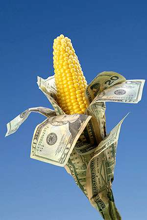 Is that a cash-coated corn stalk in your yard or are you just happy to subsidize me?
