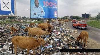 Ivoire Garbage