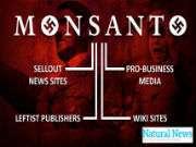 MonsantoCollaborators