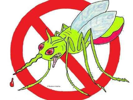 FrankenMosquito