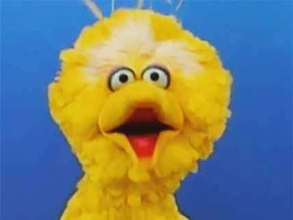 I hate Big Bird.