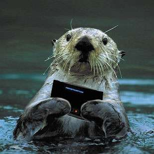 Sea otters text.