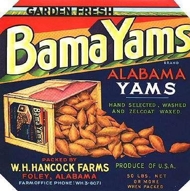 Bama Yams