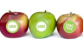 Survey Shows Most Extreme Opponents of GMO Foods Know the