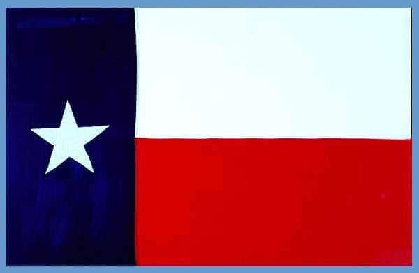 texasflag[1]